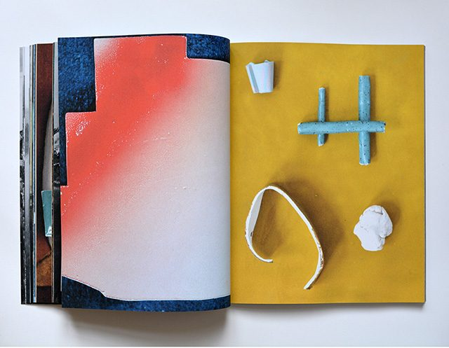 a book by Marjolijn de Wit
